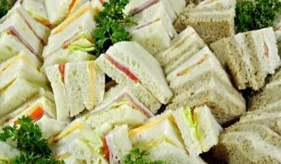cat-sandwichitos